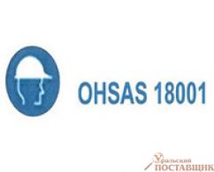 Система управления безопасностью на производстве OHSAS 18001